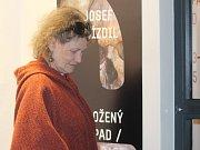 Galerie Středočeského kraje zahájila novou výstavní sezonu.