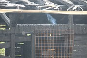 Hasiči již ve 14 hodin objekt pouze střežili, aby oheň znovu nevzplál. Některá místa ještě doutnala.