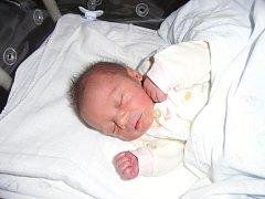 Davídek Kulich se narodil 12. května v Čáslavi. Vážil 2850 gramů a měřil 49 centimetrů. Doma ve Žlebech ho přivítali maminka Darina, tatínek Miloš a sestry Kristinka a Nikolka.