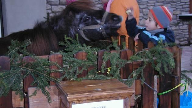 Vánoční atmosféra u živého betléma.
