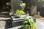 Jaro na hřbitově na Kaňku.