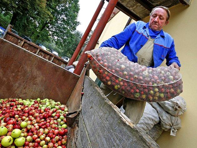 Nadúroda jablek u ovocnářů úsměvy rozhodně nevyvolává