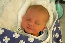 Tomáš Dibelka se poprvé na svět podíval 6. května 2019 ve 14.02 hodin v čáslavské porodnici. Vážil 3880 gramů a  měřil 51 centimetrů. Doma v Červených Pečkách se na něj těší maminka Markéta, tatínek Petr a pětiletá sestřička Terezka.