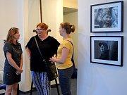 Zahájili výstavu členů čáslavského fotoklubu.