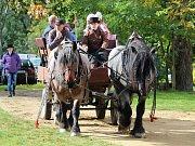 Na Kačinu se opět po roce vrátily jezdecké slavnosti.