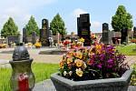 Jaro na hřbitově v Bratčicích.