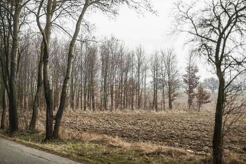 Kudy by měla vést vysokorychlostní trať? Okolím lesa u Rozkoše.
