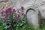 Jaro na hřbitově ve Svaté Kateřině.