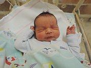 David Černovský se narodil 21.srpna 2017 jako druhorozený syn rodičům Kateřině a Martinovi ze Zruče nad Sázavou. Po porodu se pyšnil váhou 4300 gramů a mírou 52 centimetrů. Doma ho netrpělivě očekával dvouletý bratříček Štěpánek.