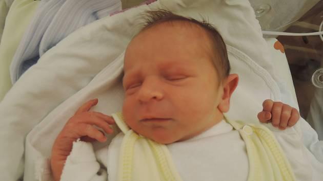 Oliver Tóth se poprvé rozkřičel 5. listopadu 2017v čáslavské porodnici. Po porodu vážil krásných 2750 gramů a měřila 48 centimetrů. Domů do Golčova Jeníkova si ji odvezli pyšní rodiče Erika a Josef a bráchové Ondřej a Láďa.
