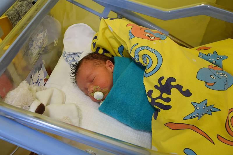 David Novotný se narodil 4. října 2021 ve 14.22 hodin v benešovské porodnici. Vážil 3650 g. Doma ve Vlašimi ho přivítali maminka Stefanie a tatínek Jan.