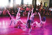 Skupina Free Club Čáslav předvedla  tanec na téma V stínu kapradiny. Procítěné vystoupení bylo odměněno velkým aplausem a druhým místem v kategorii Parketový tanec.