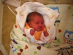 Šárka Vašíčková se narodila 25. března 2018 ve 12.55 hodin v Čáslavi. Vážila 3360 gramů a měřila 51 centimetrů. Doma na Kaňku ji přivítali maminka Ilona, tatínek Vítězslav a dvouletá sestřička Barborka.