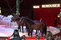 Národní cirkus Berousek ve čtvrtek odehraje první představení.