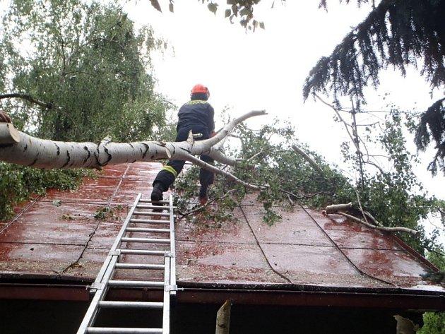 Bříza spadla na chatu u Zruče nad Sázavou