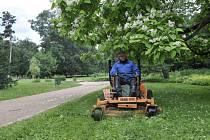 Park, údržba zeleně. Ilustrační foto.
