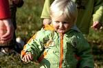 Podzimní sokolení na Kuklíku
