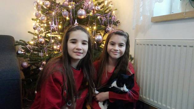 Sestry Alenka (vlevo) a Terezka Kordíkovy se svým milovaným kocourem Bertíkem, který se zázračně uzdravil.