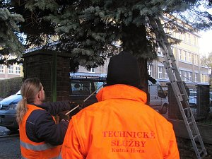 Přípravy na kácení vánočního stromu v Kutné Hoře