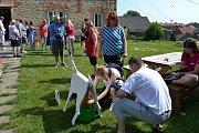 Hry bez bariér na statku Dítě a kůň v Miskovicích.