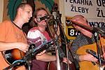 Festival Bluegrassové Žleby 2010.