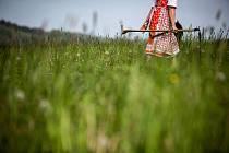 Kosení trávy. Ilustrační foto.