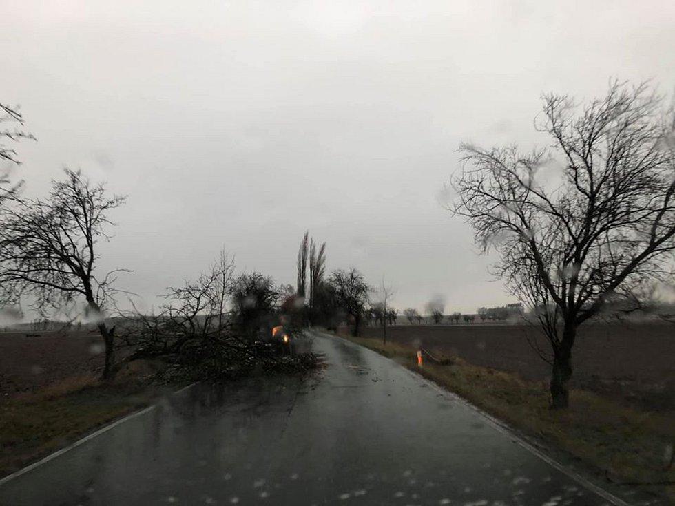 Spadlý strom na silnici u Červeného domku mezi obcemi Svatá Kateřina a Nové Dvory.