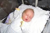 Jindřich Alka se narodil 9. června v Čáslavi. Vážil 2950 gramů a měřil 48 centimetrů. Doma v Kutné Hoře ho přivítali maminka Anna a tatínek Jaroslav.