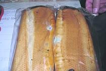 Plíseň na chlebu. Ilustrační foto.