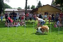 Den dětí na fotbalovém hřišti v Horních Bučicích.