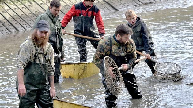 Do podzimních výlovů rybníků se zapojil i Kácov.