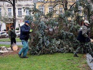 Čáslav přišla o vánoční strom