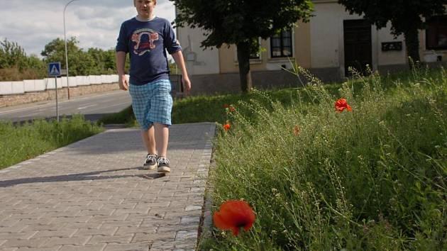 Místo trávy plevel. Tak vypadá veřejná zeleň na křižovatce ulic Česká a Na Valech v Kutné Hoře.