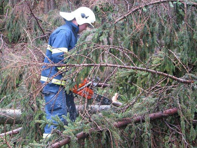 Odstranění stromů na silnici u Červených Janovic.