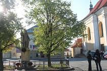 Slavnostní obnova sochy sv. Václava na náměstí v Uhlířských Janovicích.