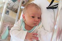 MAX ŽIŽKA  Narodil se 14. ledna v liberecké porodnici mamince Nikol Žižkové z Liberce.  Vážil 3,18 kg a měřil 48 cm.