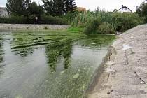 Město Chrastava zvažuje, jak naložit se stávajícím koupalištěm. Ve hře je několik variant, jak koupaliště zatraktivnit a lépe využít.