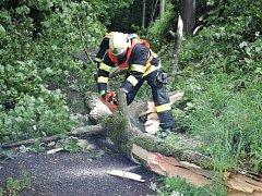 Hasiči museli zasahovat u více než 100 případů. Nejčastěji odstraňovali spadlé stromy. U Staré Paky museli evakuovat cestující z vlaku.