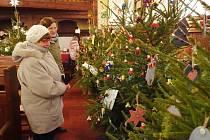 Výstava vánočních stromků je pevnou součástí adventního období v Hrádku.