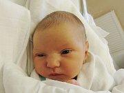 NATÁLIE FIKRTOVÁ Narodila se 29. července v liberecké porodnici mamince Kateřině Nevrlé z Jeřmanic. Vážila 2,45 kg a měřila 46 cm.