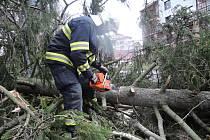 Hasiči se nenudili, silný vítr lámal stromy a trhal střechy. Na snímku spadlý strom v Turnově.