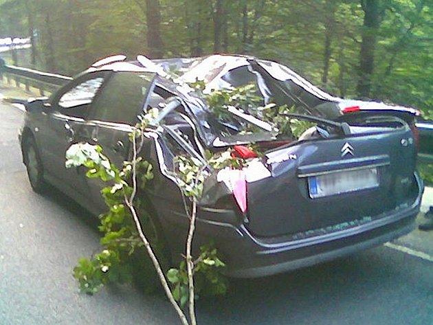 Pád stromu na silnici před obcí Vilémov.