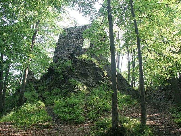 Zřícenina hradu Hamrštejn. Zbytky nejstarší stavby na území dnešního města Liberce chátrají.