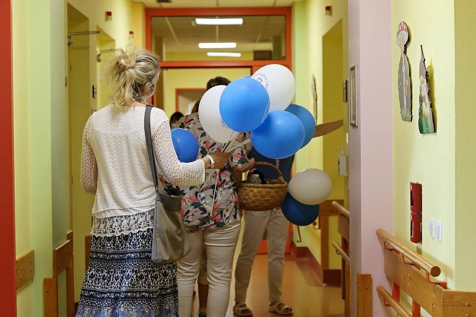 Zvířecí návštěva potěšila dětské pacienty v liberecké nemocnici.