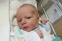 DAVID KORF  Narodil se 23. ledna v liberecké porodnici mamince Kateřině Korfové z Liberce. Vážil 3,26 kg a měřil 50 cm.