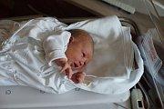 MICHALA KOLAŘÍKOVÁ Narodila se 16. října 2018 v liberecké porodnici mamince Aleně Kolaříkové z Doks. Vážila 2,95 kg a měřila 47 cm.