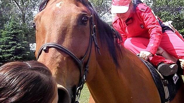 PROJÍŽĎKY PATŘILY K NEJVĚTŠÍ ATRAKCI. Děti nejvíc přitahovaly v jízdárně koně, někdo se svezl i víckrát.