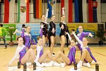 SPORT AEROBIC LIBEREC. Dole fialově-stříbrná skupina starších žaček a nahoře bronzové juniorky.