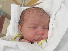 JULIE DITTRICHOVÁ Narodila se 6. listopadu v liberecké porodnici mamince Lence Futschikové z Liberce. Vážila 2,97 kg a měřila 49 cm.