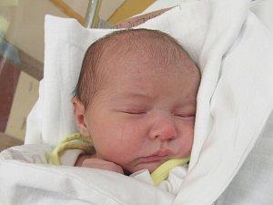 miminka 45. týdne roku 2017